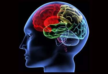 The-brain-limitations-arabic-christian-articles-inspirational